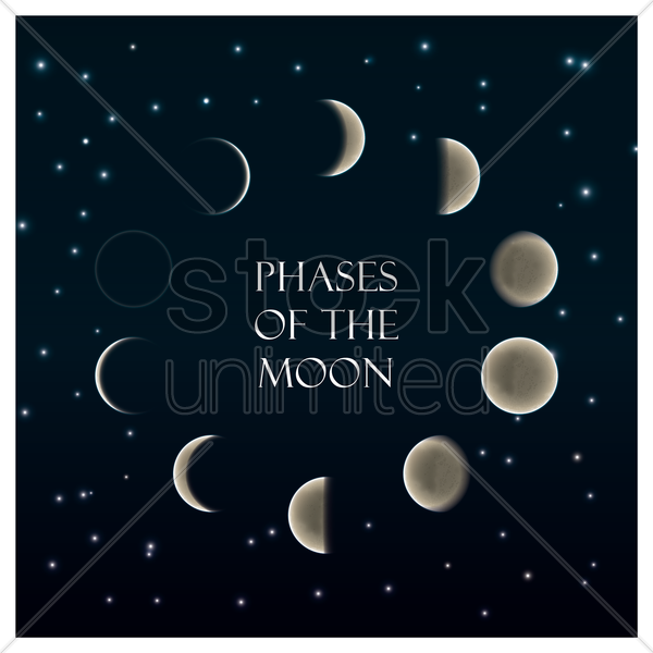 set of phases of the moons vector graphic