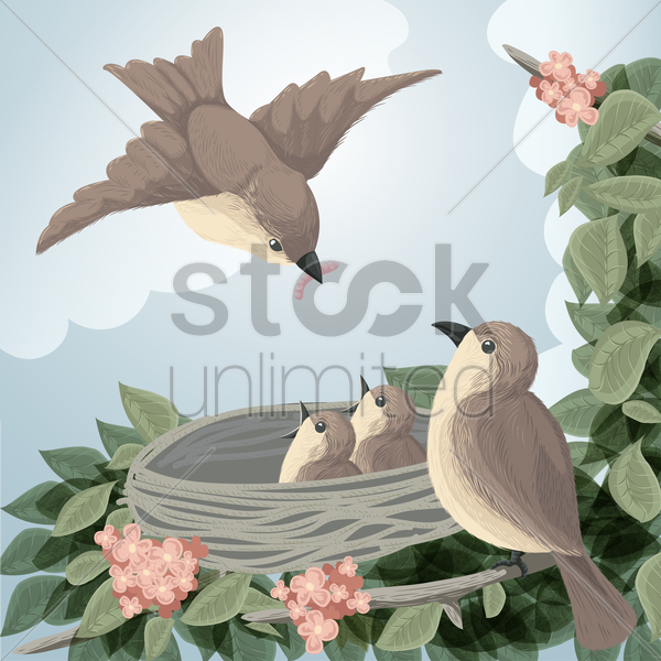 sparrows in the nest vector graphic