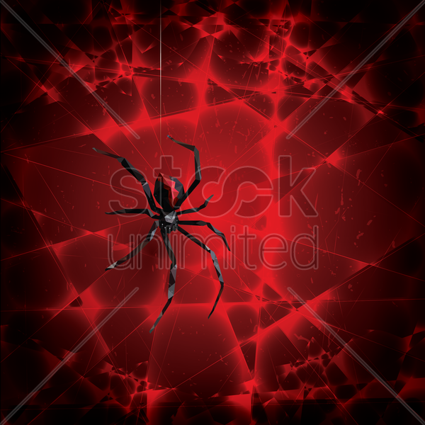 spider vector graphic