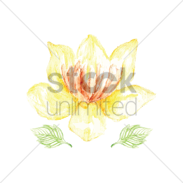 watercolor flower vector graphic