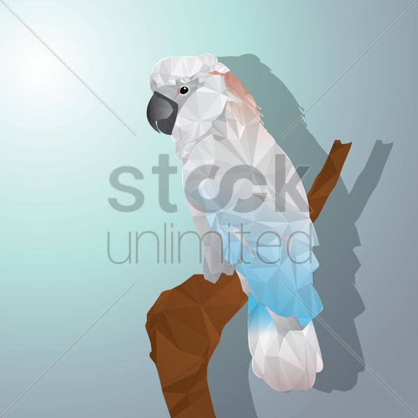 white cockatoo vector graphic