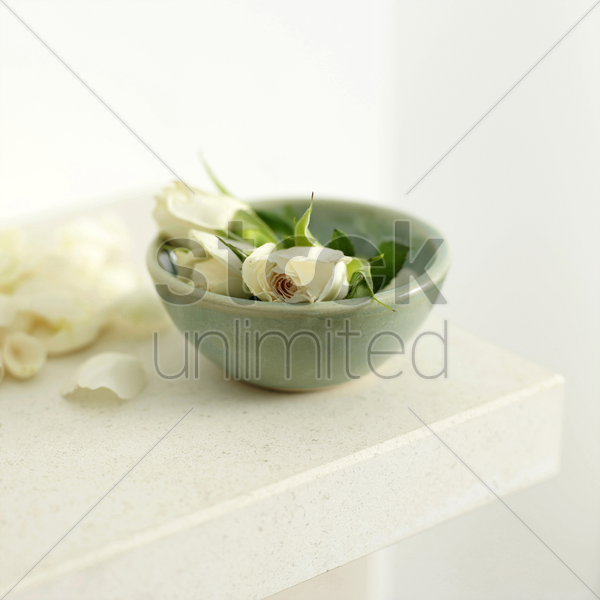 a bowl of white roses with a few petals scattered beside the bowl stock photo