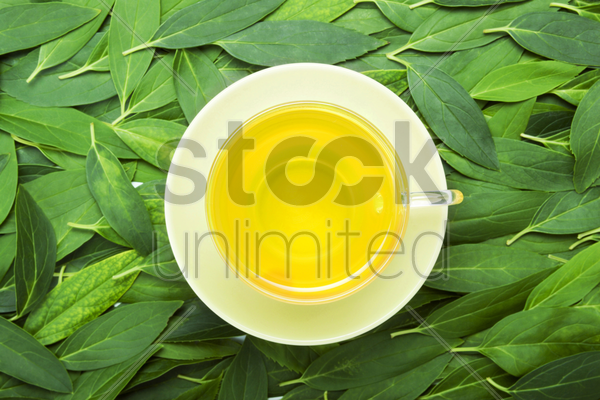 a cup of tea with fresh tea leaves on the background stock photo