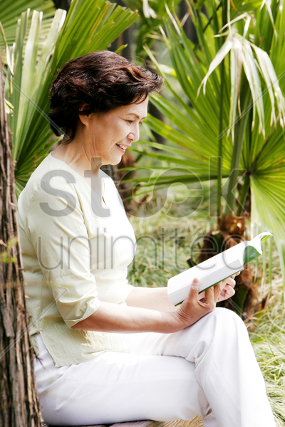 an old woman reading a book stock photo