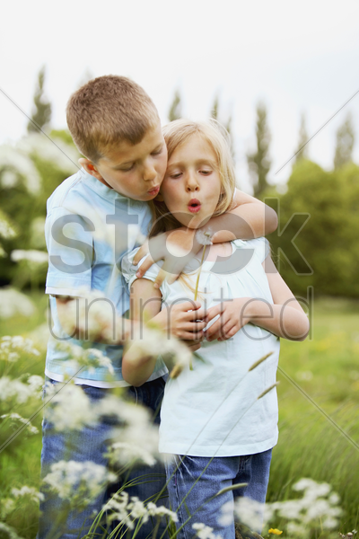 boy and girl blowing dandelion together stock photo