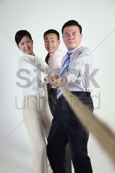 business people tugging rope stock photo
