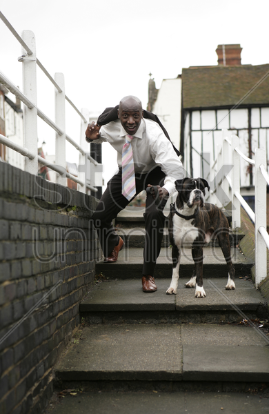 businessman and his dog stock photo