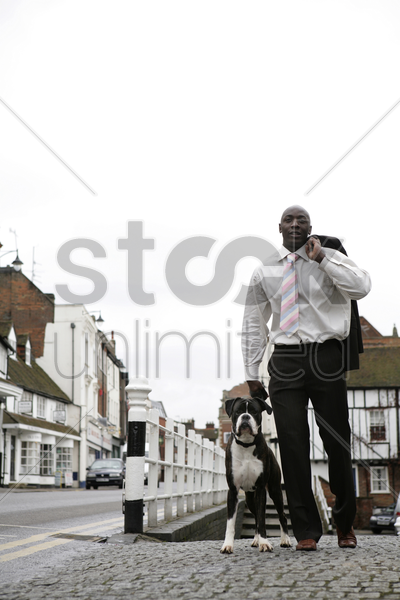 businessman taking his dog for an evening walk stock photo