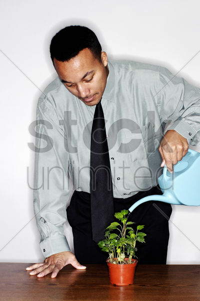 businessman watering plants stock photo