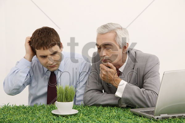 businessmen looking at cup of grasses stock photo