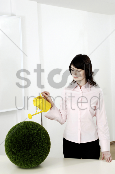 businesswoman watering a round plant stock photo