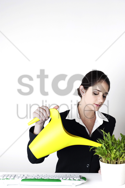 businesswoman watering the plants stock photo