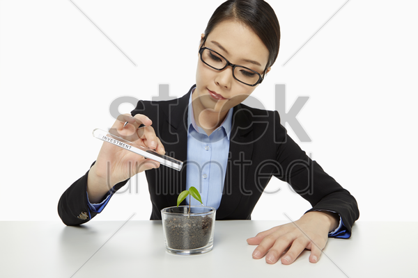 businesswoman with a test tube and a plant stock photo