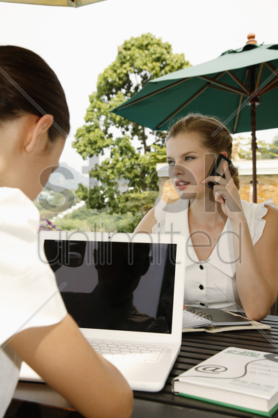 businesswomen working together by the poolside stock photo