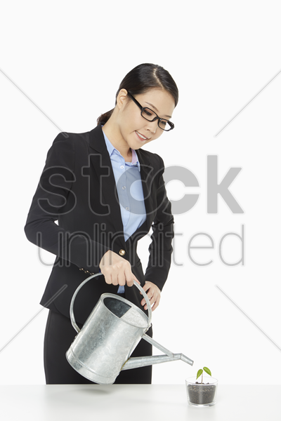 cheerful businesswoman watering a small plant stock photo