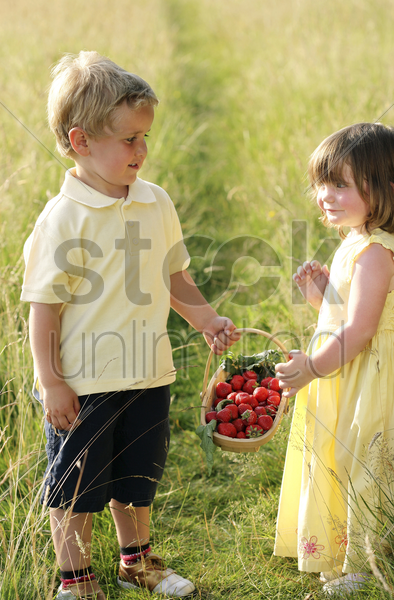 children holding a basket of strawberries stock photo