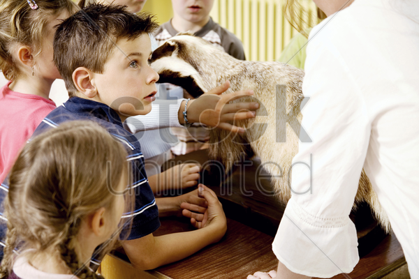 children looking at a bear model while listening to their teacher's explanation stock photo