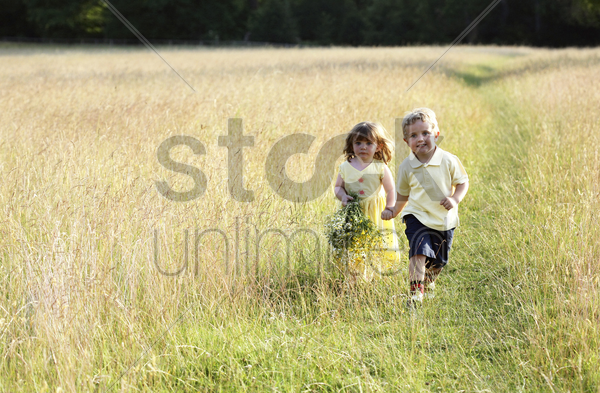 children wandering in the meadow stock photo