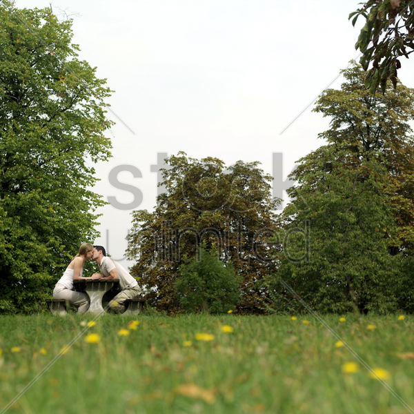 couple kissing in the park stock photo