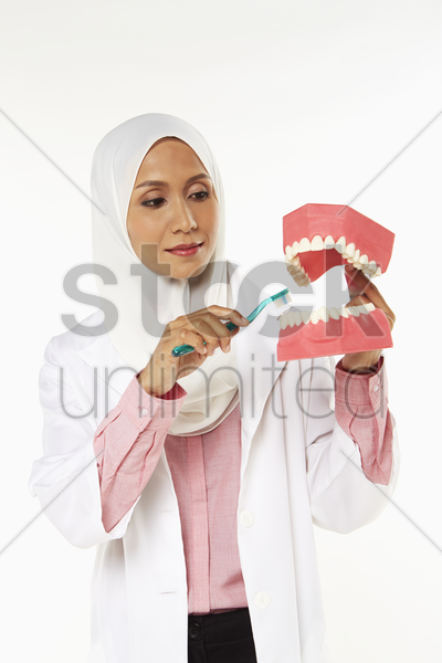 dentist demonstrating how to brush teeth stock photo
