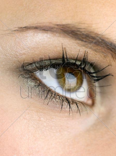 eye of a woman stock photo