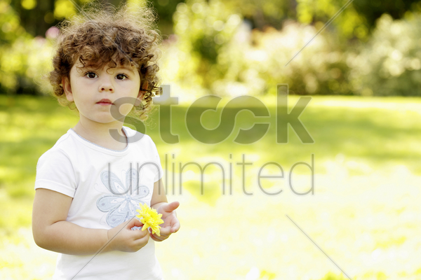 girl holding a yellow flower stock photo