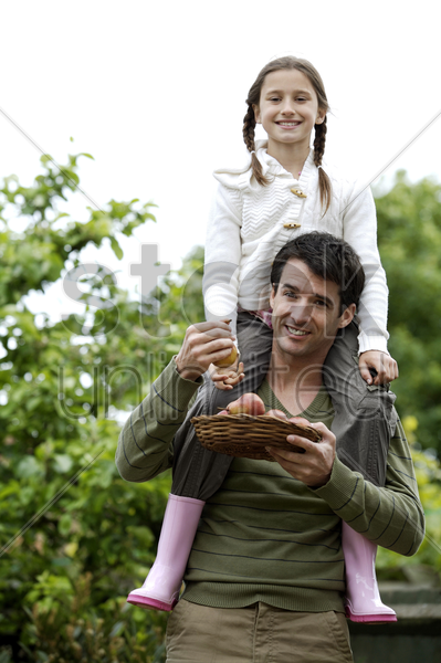 girl sitting on man's shoulders with man holding a basket of pears stock photo