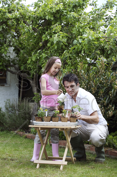 girl watering pots of flowers while man looks on stock photo