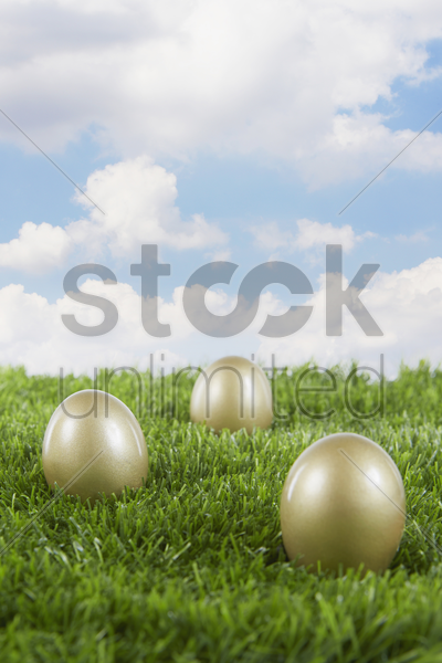 golden eggs on a field stock photo