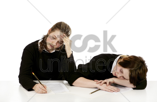 hardworking and lazy student stock photo