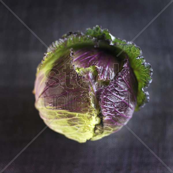 high angle close up of a cabbage stock photo