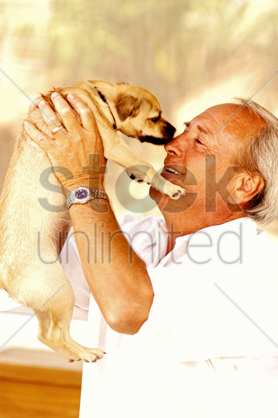 man carrying up his dog stock photo