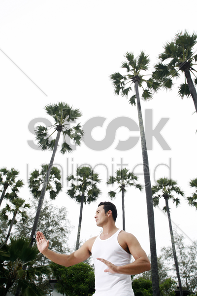 man practicing tai chi stock photo
