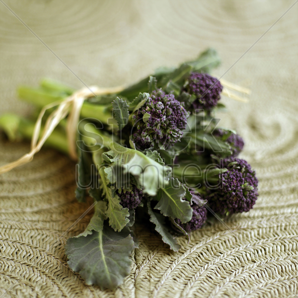 purple long stem broccoli stock photo