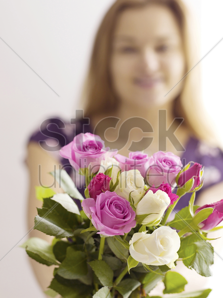 roses in hand stock photo