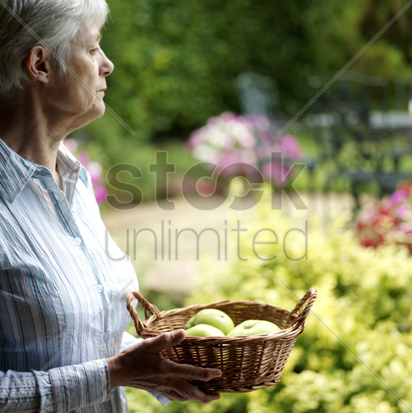 senior lady holding a basket of fruits stock photo