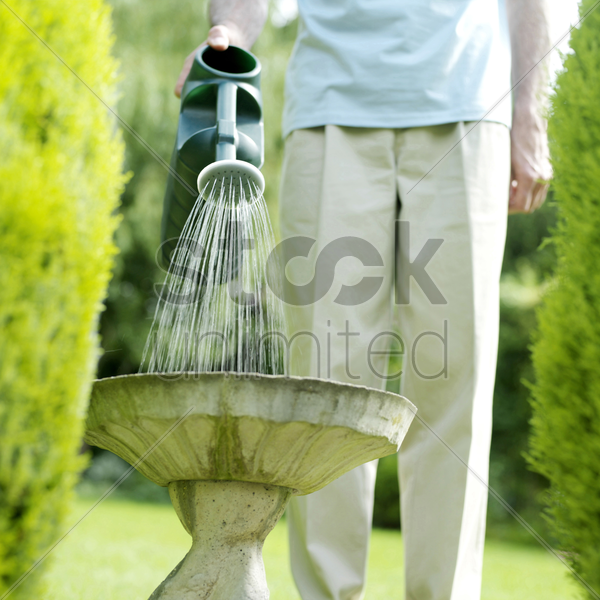 senior man watering plant stock photo