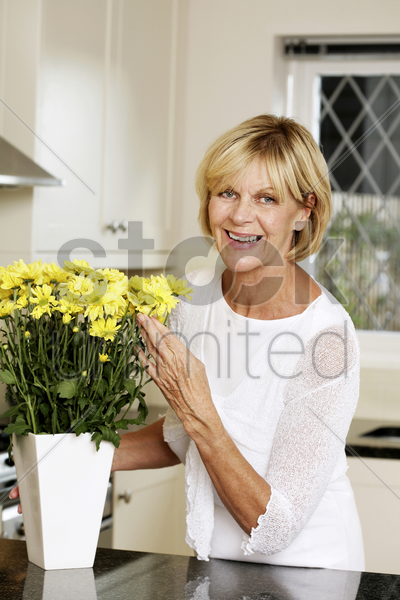 senior woman arranging flowers in a vase stock photo