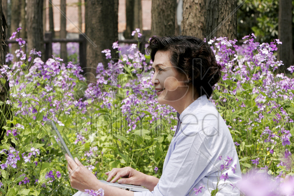 senior woman using laptop stock photo