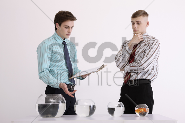 two men evaluating various sizes of fishbowls stock photo