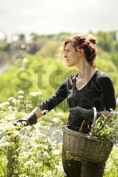 woman carrying a basket of flowers stock photo