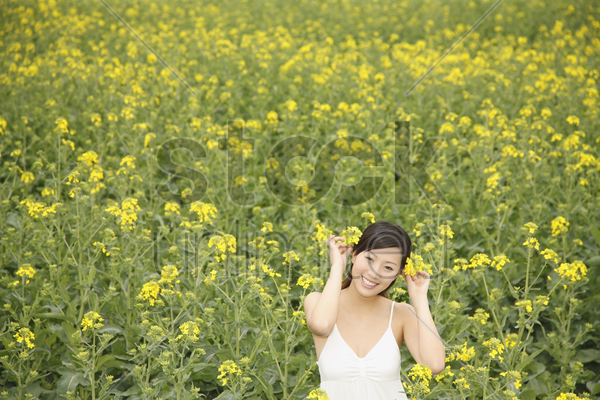 woman decorating oilseed rape on her hair stock photo