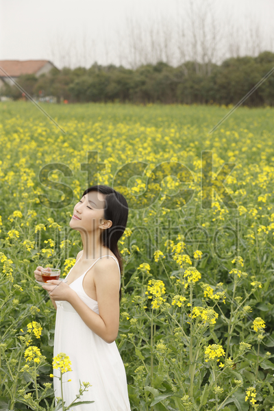 woman enjoying a cup of tea at the rape field stock photo
