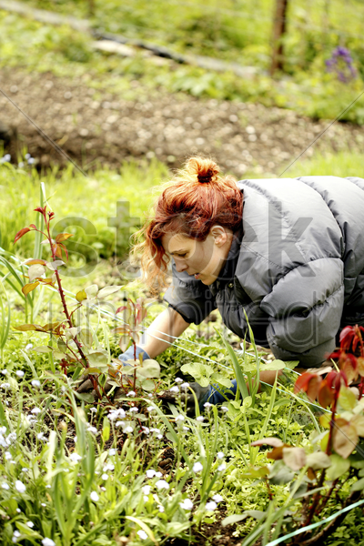 woman gardening in the garden stock photo