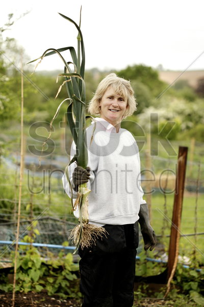 woman holding a plant stock photo