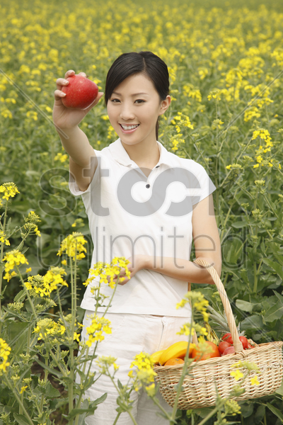 woman holding red apple and a basket of fruits stock photo