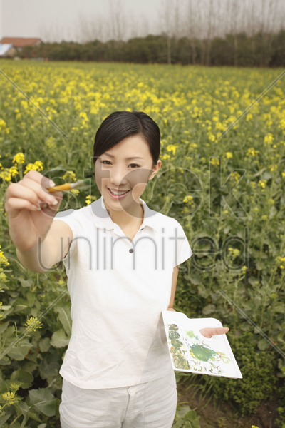 woman painting at the rape field stock photo