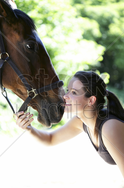 woman playing with her horse stock photo