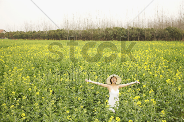 woman standing at the rape field with her arms outstretched stock photo
