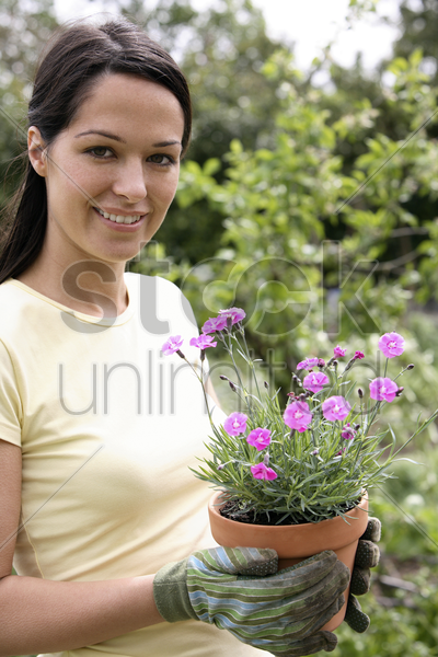 woman with gardening gloves holding a pot flower stock photo